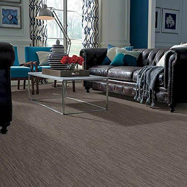 Anso® Nylon Carpet | Chula Vista, CA